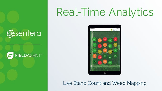 Sentera Announces Real-Time Analytics for FieldAgent