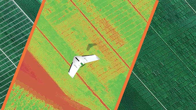 Phenome Networks and Delair Establish Strategic Collaboration to Accelerate Plant Breeding and Variety Testing with Drone Data