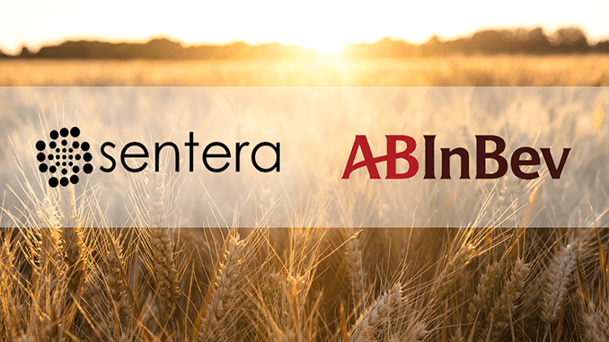 Sentera and AB InBev Partner for Sustainability and Grower Empowerment