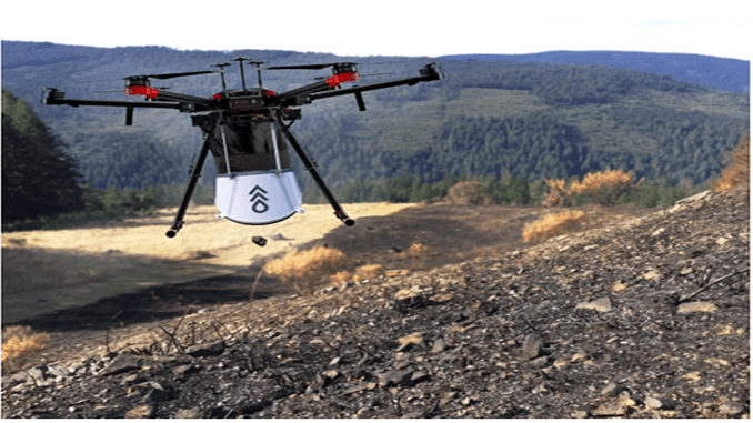Flash Forest Drones to Plant 40,000 Trees a Month in Canada