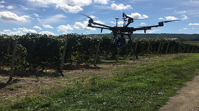 RIT professor developing drone imaging systems to help farmers monitor grapevine nutrients
